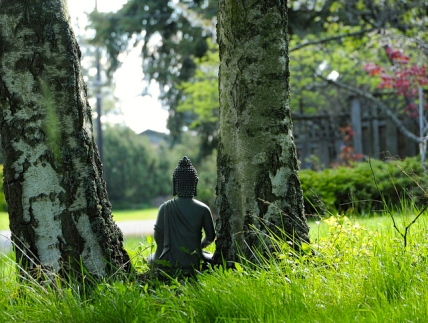 buddha-meditating-sit-quiet-nature-grass